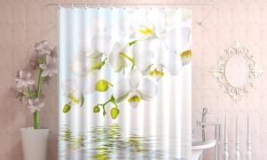 Водный-цветок